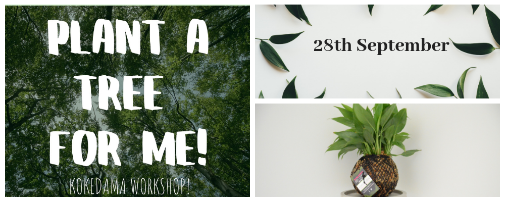Kokedama workshop, Plant a tree for me, kokedama